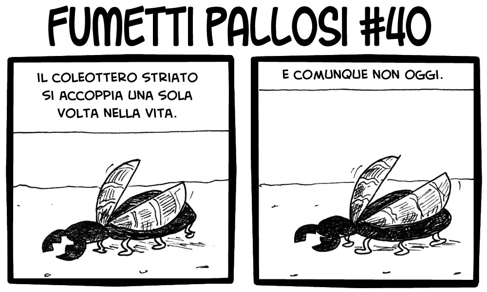 Fumetti Pallosi 40